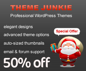 Theme-Junkie-Discount-Code-2012