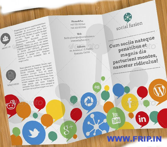 Social Fusion Tri Fold and Flyer