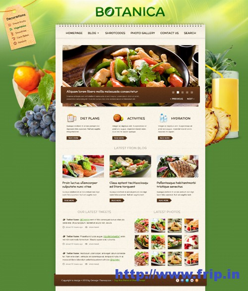 Botanica Diet & Fitness WordPress Theme