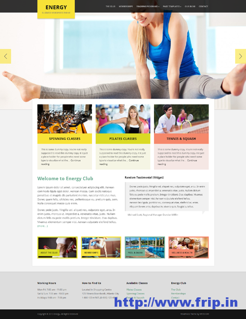 Energy Business WordPress Theme