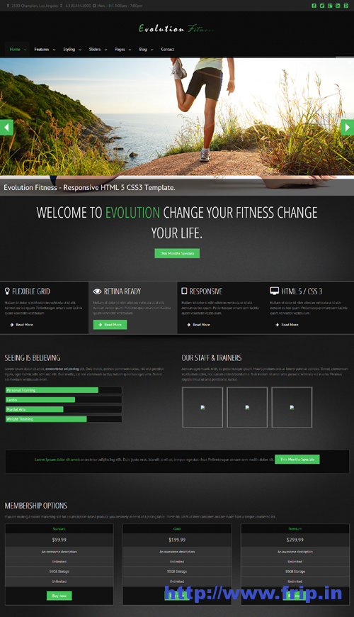 Evolution Fitness Responsive WordPress Theme