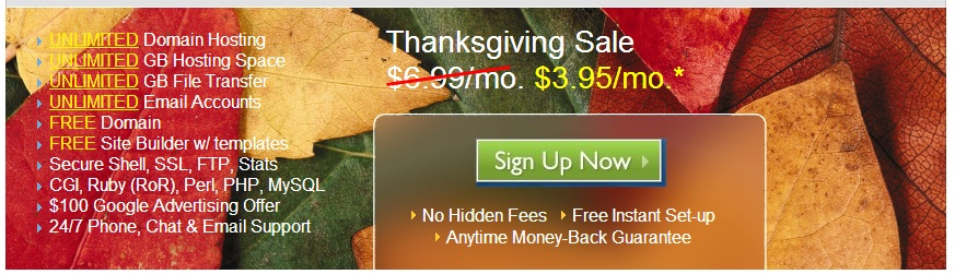 bluehost thanksgiving coupon code