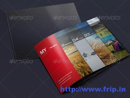 Portfolio & Showcase Brochure