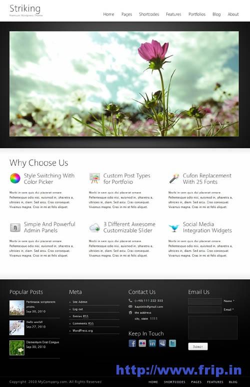 Striking Premium Corporate WordPress Theme