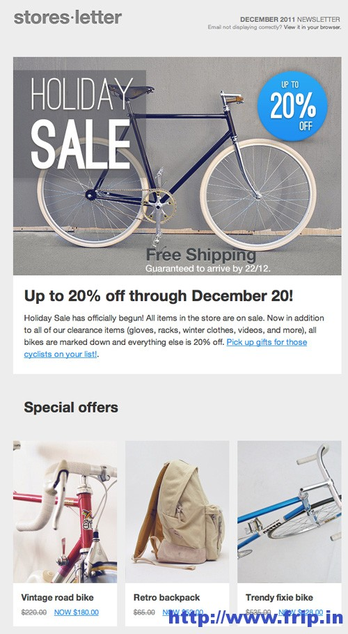 Storesletter Email Marketing Template