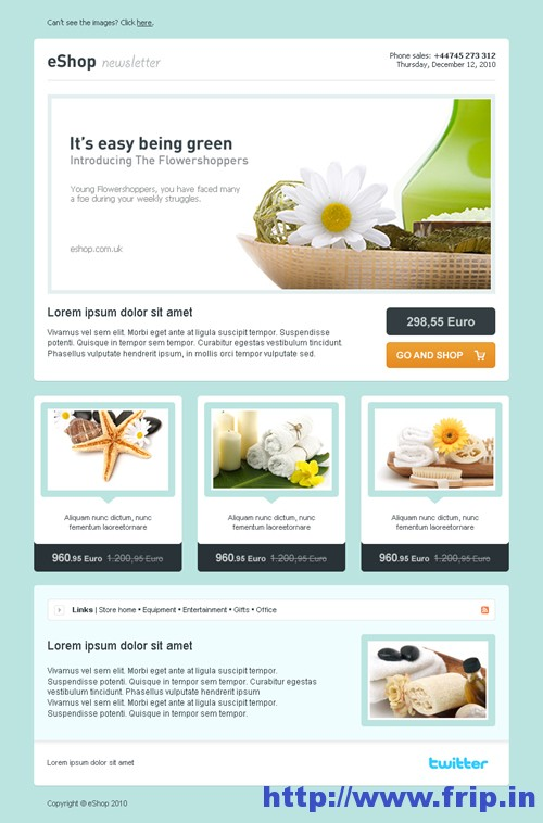 eShop Newsletter Template