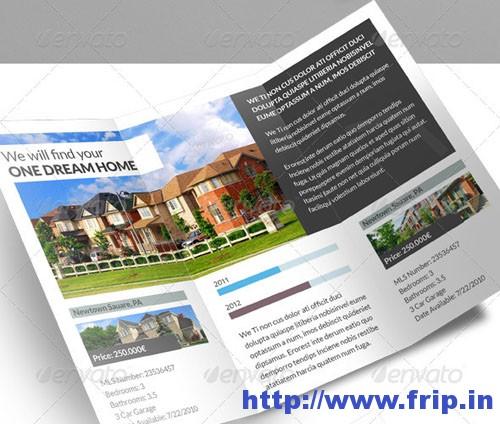Real Estate 3 Fold Brochure