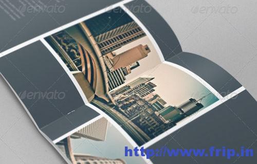Real Estate Stripes Brochure