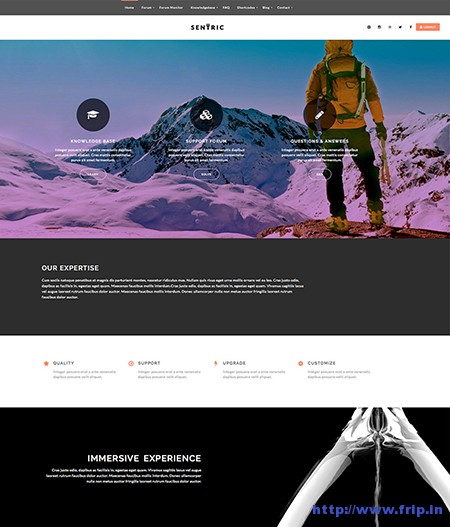 Sentric-Knowledge-Base--Support-Forum-Theme