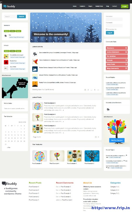 Buddy Multi purpose WordPress BuddyPress Theme
