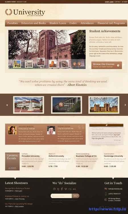 University Education Template