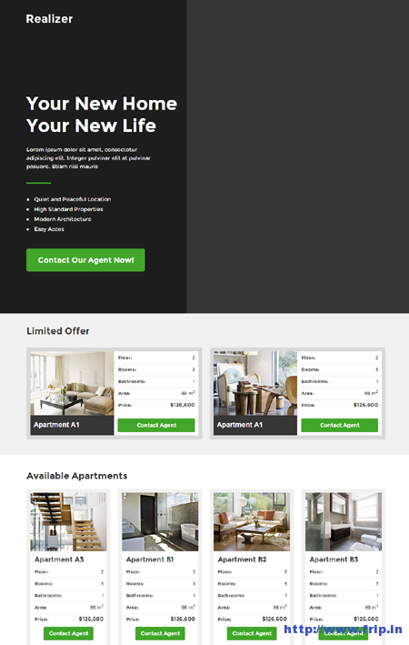 Realizer – Real Estate Lading Page