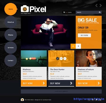 Z Pixel Photo Store PSD Theme