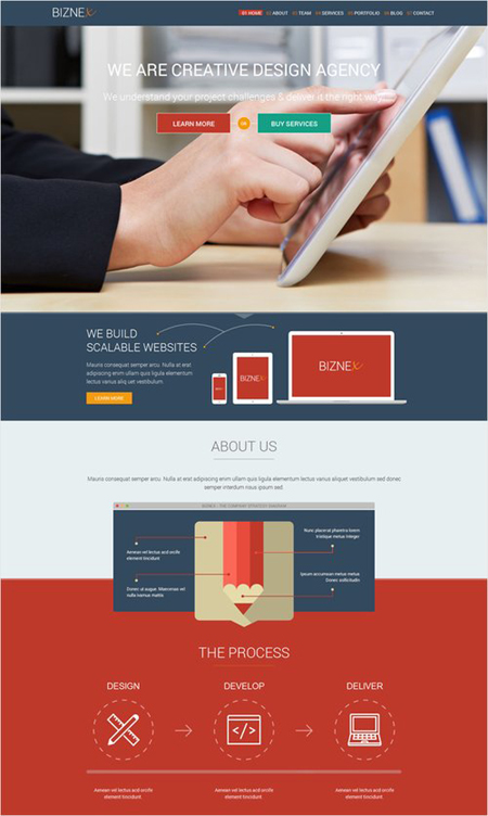 BizNex wordpress theme