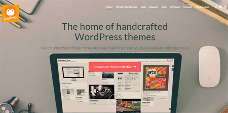 frogs wordpress themes sale
