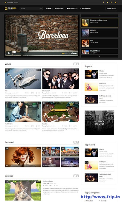 true-mag-video-wordpress-theme
