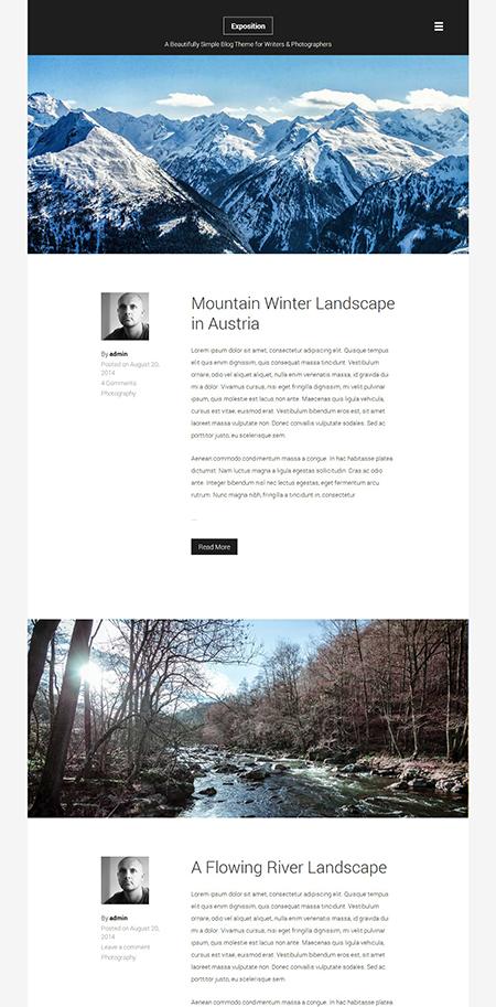Exposition photograph WordPress theme
