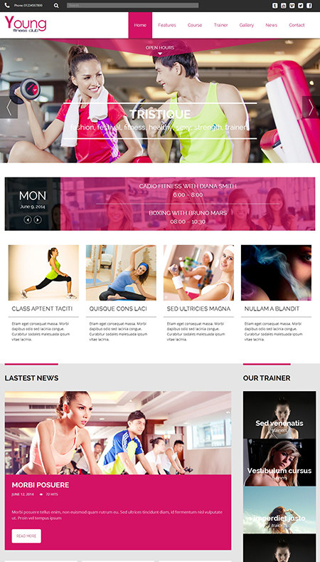 Young Fitness WordPress Theme