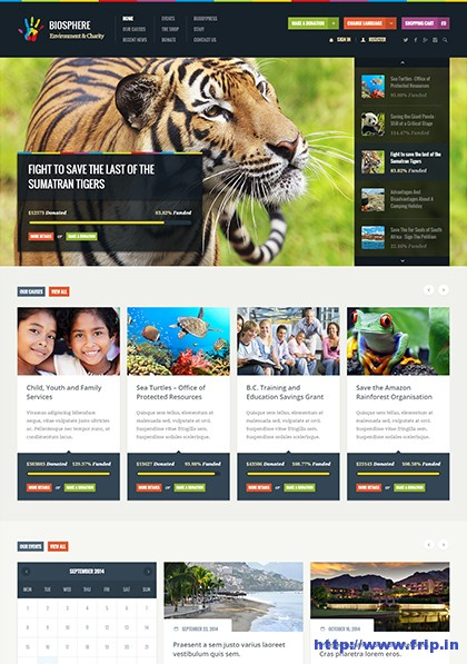 Biosphere-Charity-WordPress-Theme