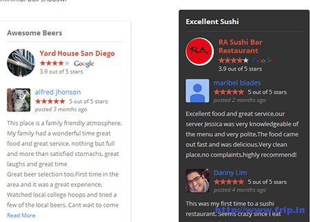 Google-Places-Reviews-Plugin