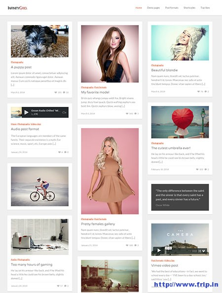 Infinity-Grid-WordPress-Theme