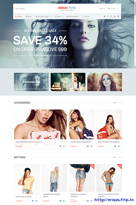 emaxstore wordpress theme