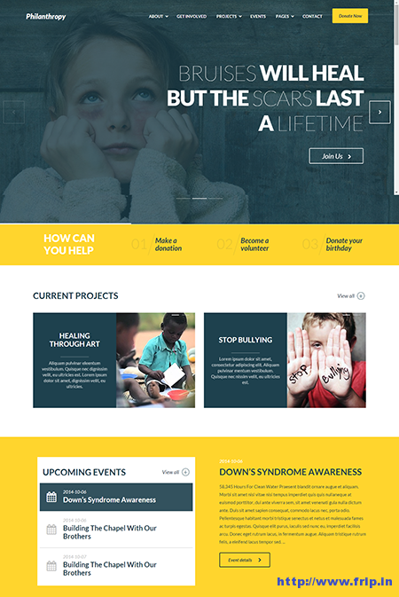 philanthropy wordpress themes