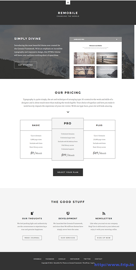 remobile pro wordpress theme