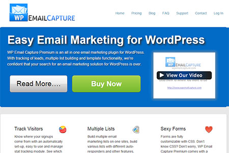 WP-Email-Capture-black-friday-deal