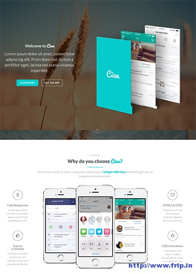 Cian-App-Landing-Page-WordPress-Theme