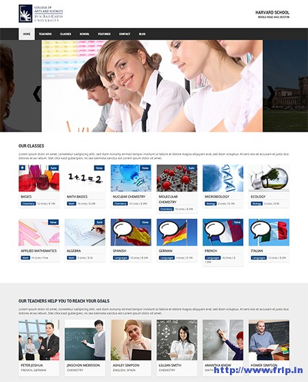 College-WordPress-School-&-Education-Theme