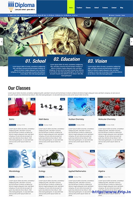Diploma-School-&-Education-WordPress-Theme