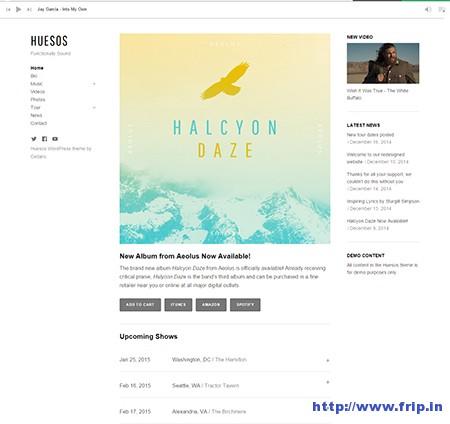 Huesos-Music-WordPress-Theme
