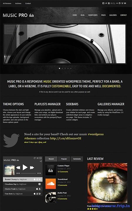 Music-Pro-WordPress-Theme