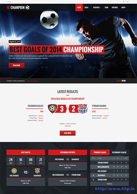 Champion-Soccer-&-Football-WordPress-Theme