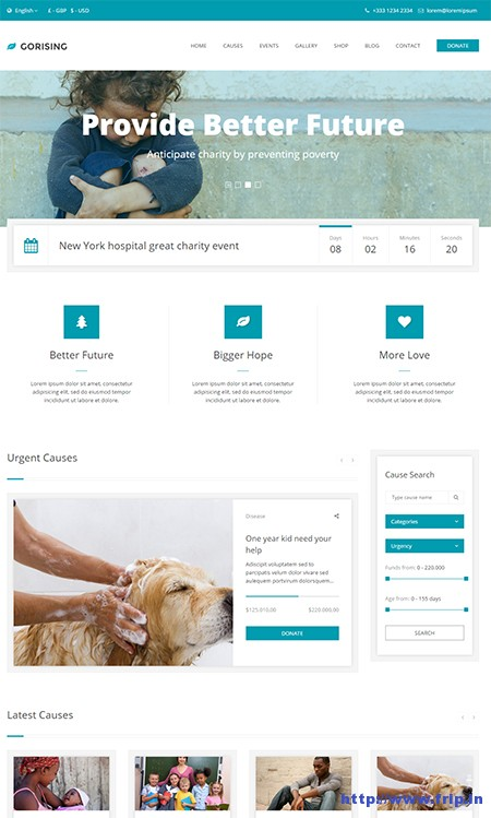 GoRising-Non-Profit-WordPress-Theme