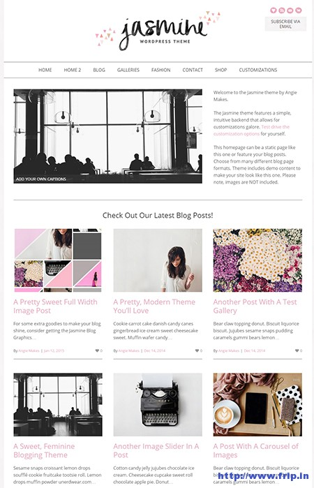 Jasmine-Modern-WordPress-Theme