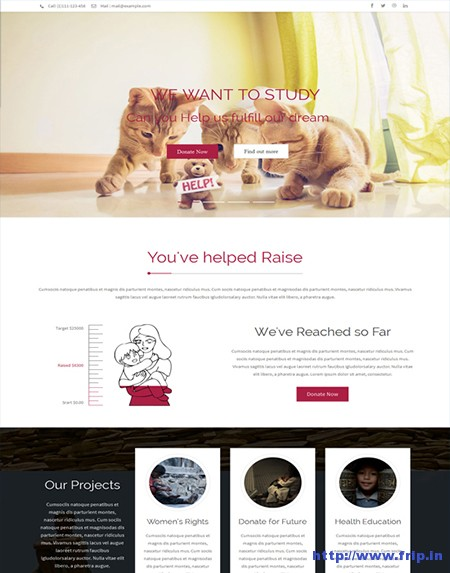 Rise-Charity-Responsive-Wordpress-Theme