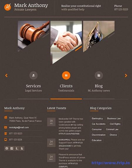 Themis-Law-Business-WordPress-Theme