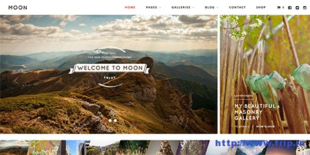 Moon-Photography-WordPress-Theme