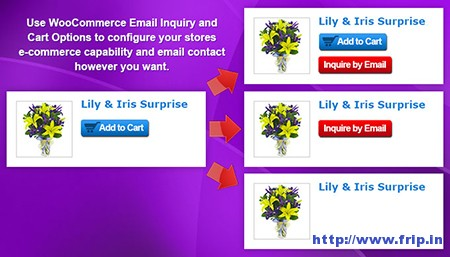 WooCommerce-Email-Inquiry-Plugin