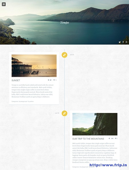 tempo-timeline-wordpress-theme