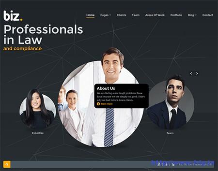 Biz-Business-WordPress-Theme