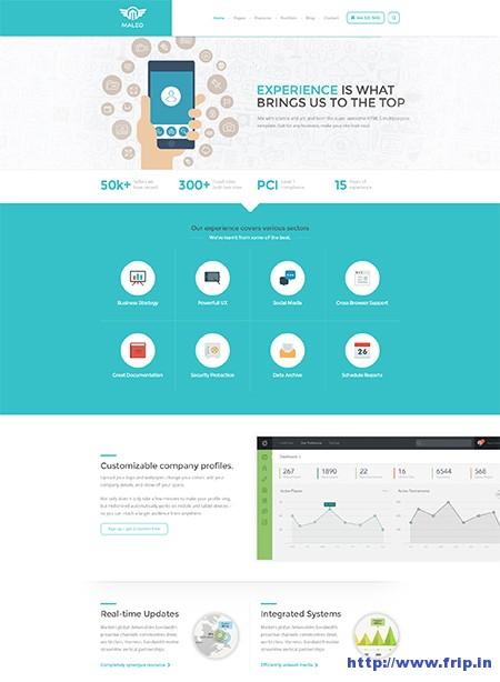 Maleo-Corporate-WordPress-Theme