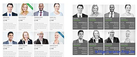 Modern-Team-Showcase-WordPress-Plugin