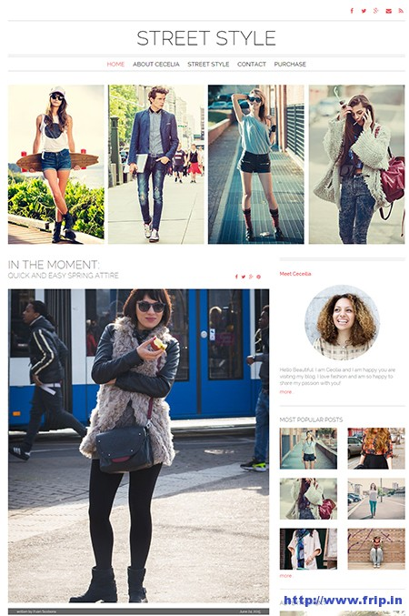 Street-Style-Fashion-WordPress-Theme