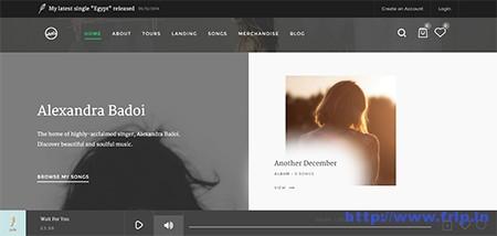 Sura-Music-Web-App-WordPress-Theme