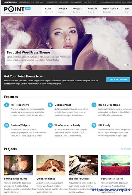 Point-Pro-WordPress-Theme