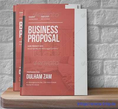 Sari-Business-Proposal