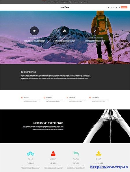 Sentric-Support-Forum-WordPress-Theme